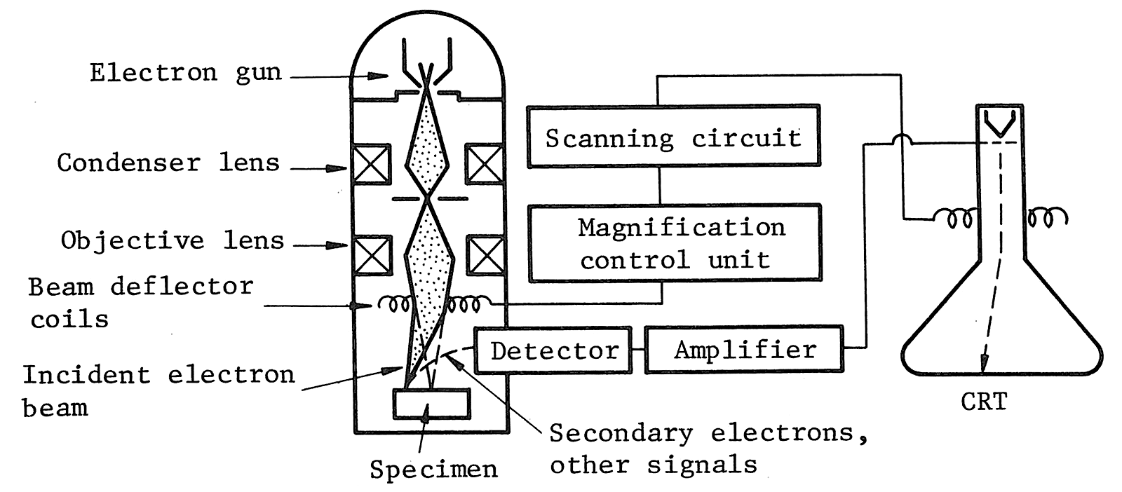Scanning electron microscopy sem at home semprinicple block diagram showing the working principle of scanning electron microscopes ccuart Image collections